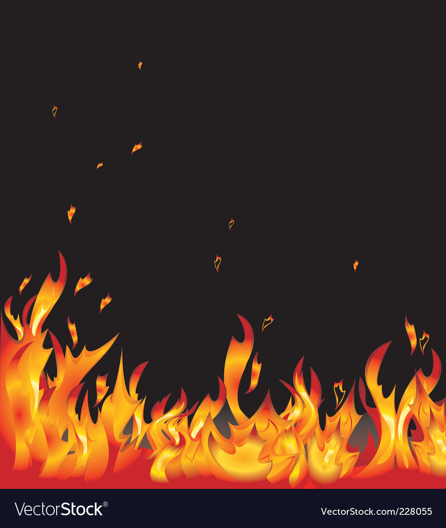 Flames vector image