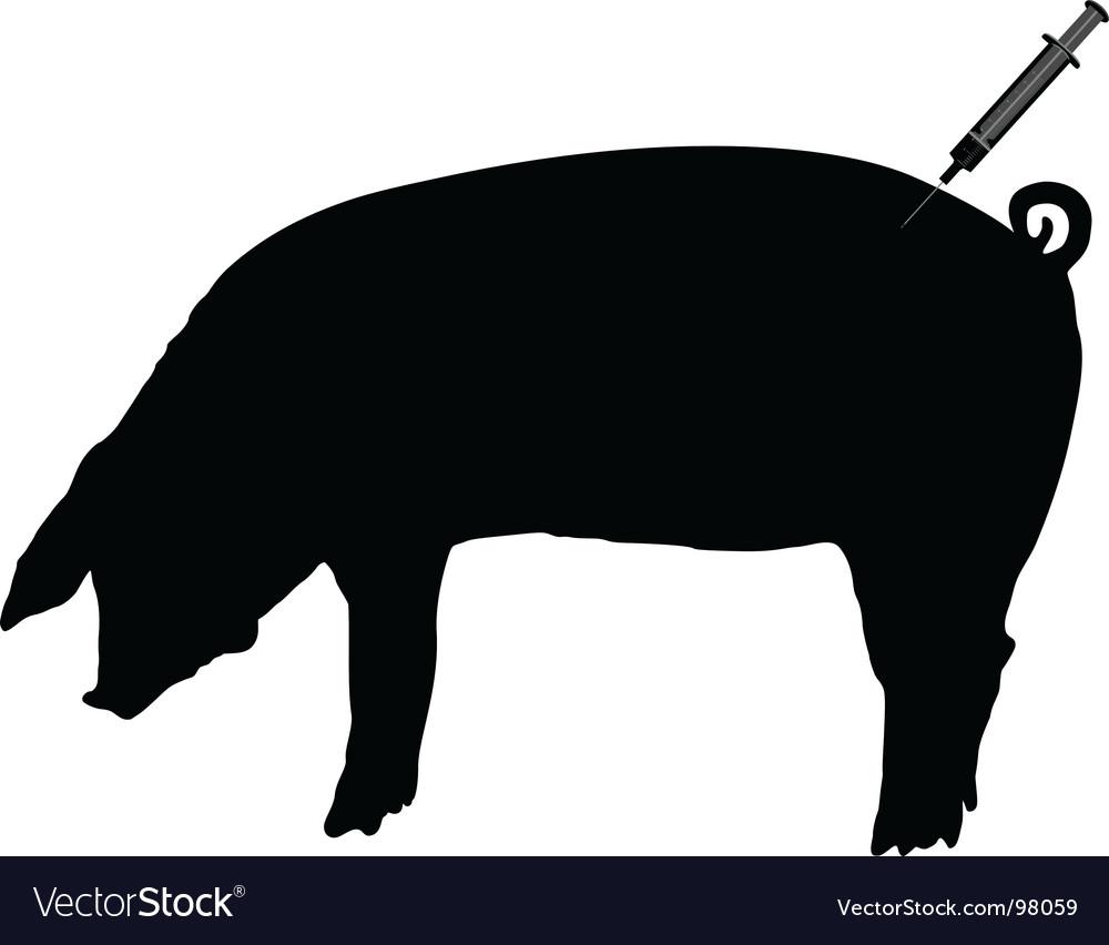 Swine gets an inoculation vector image
