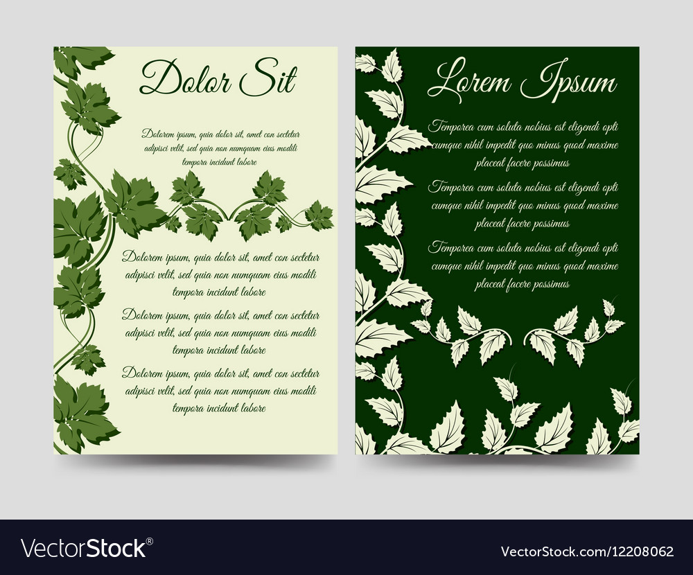 Floral brochure template wich branches vector image