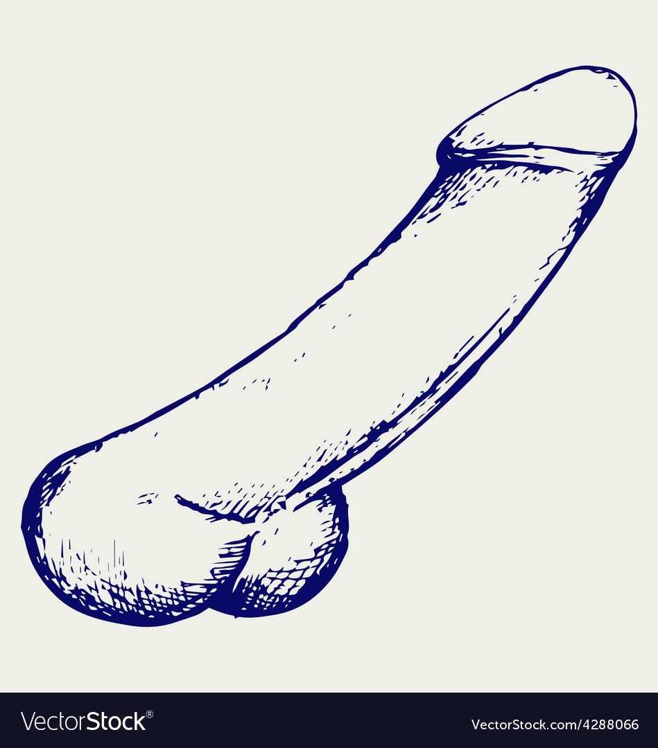Free vintage penis pics