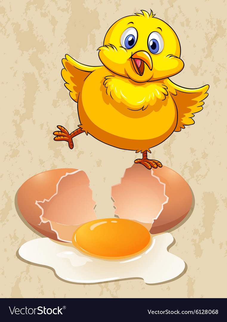 Little chick and raw egg vector image