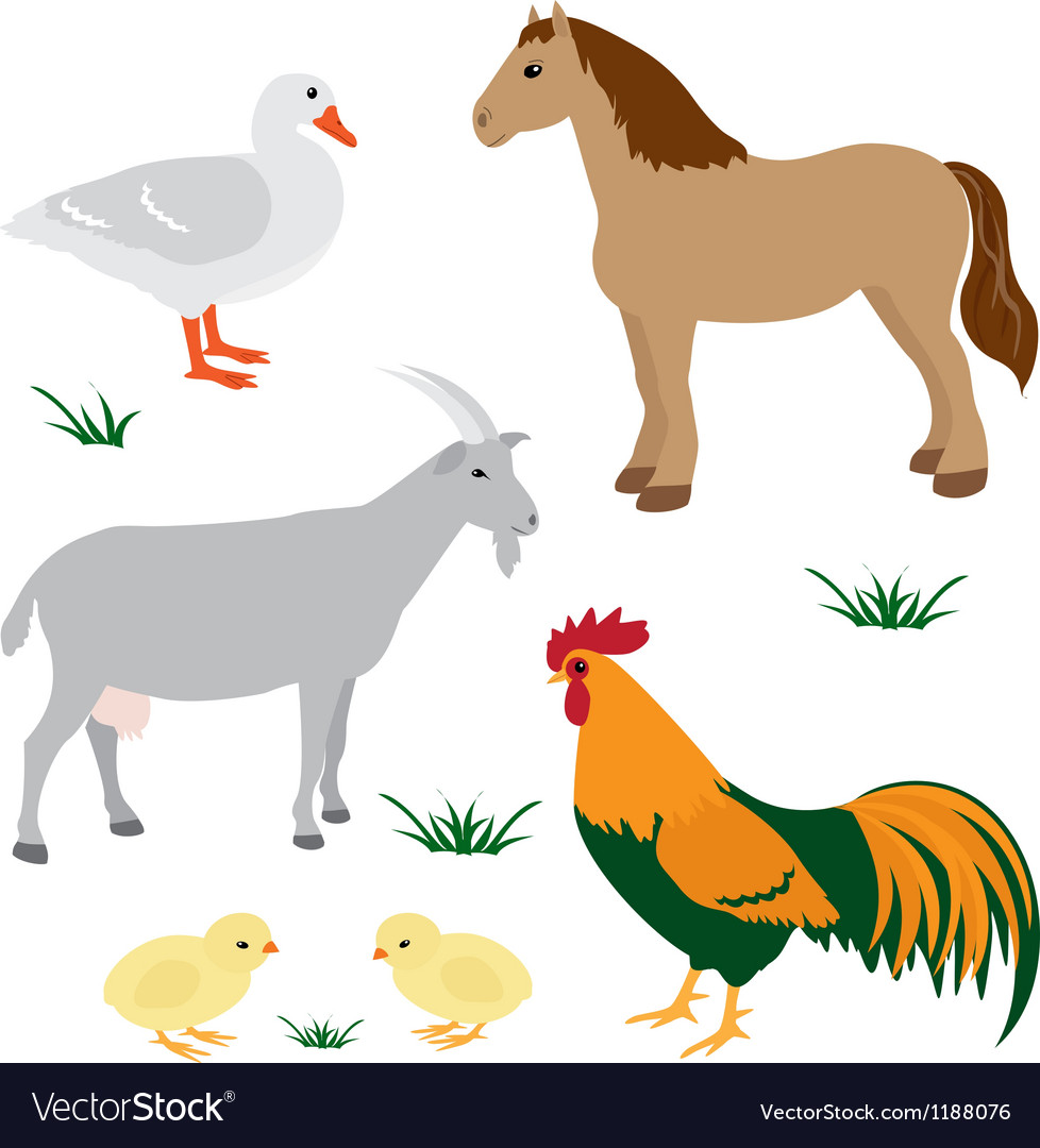 Farm animals set 2 vector image