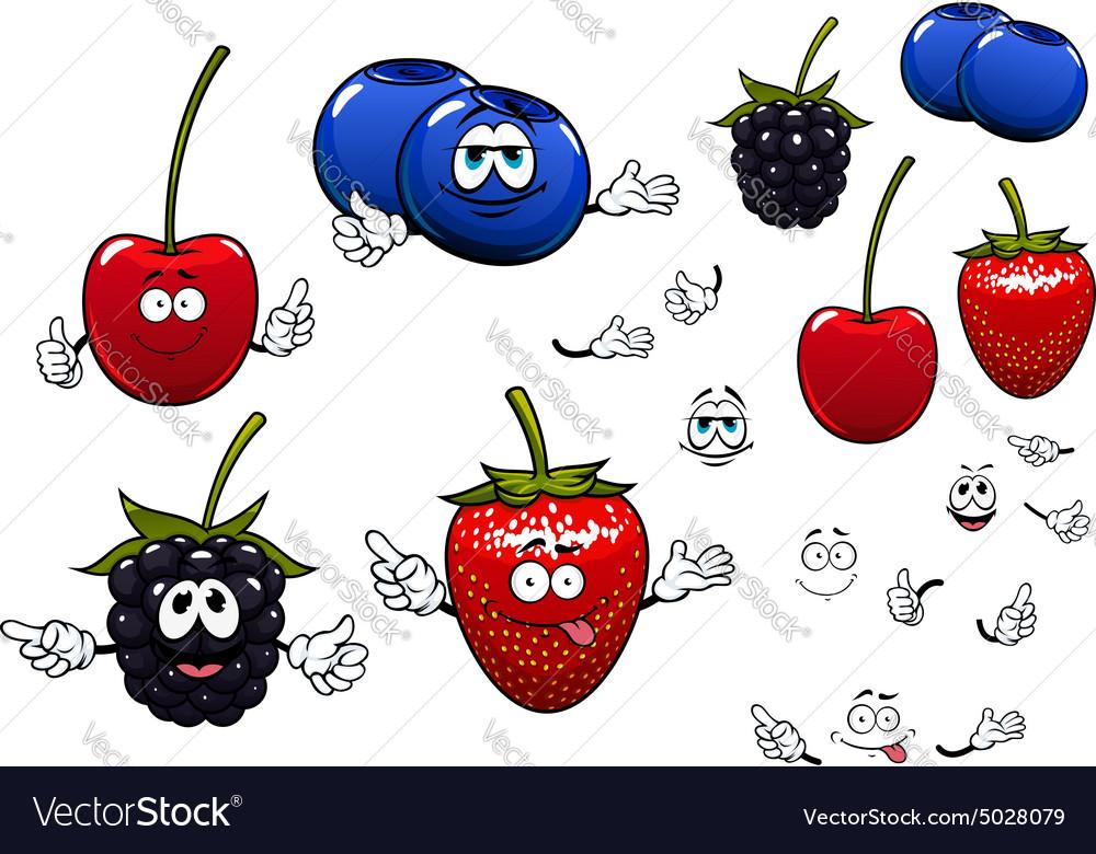 Strawberry blackberry cherry blueberry fruits vector image
