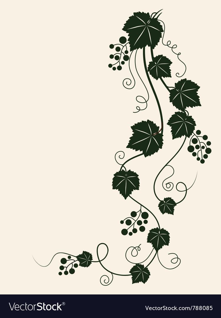 Grape vine silhouette vector image