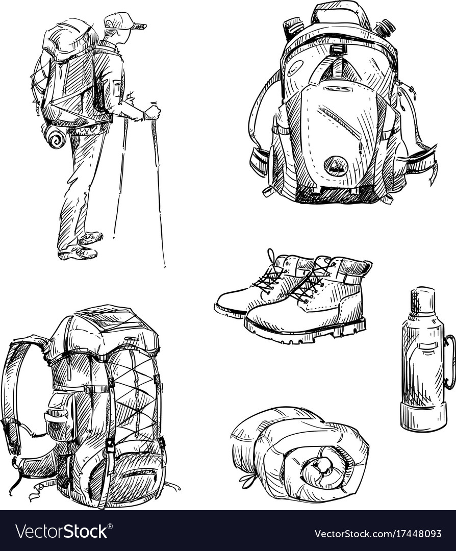 Hiking and camping vector image