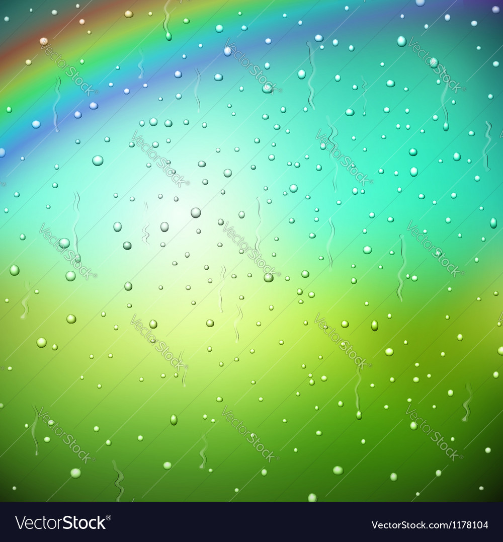 After rain vector image