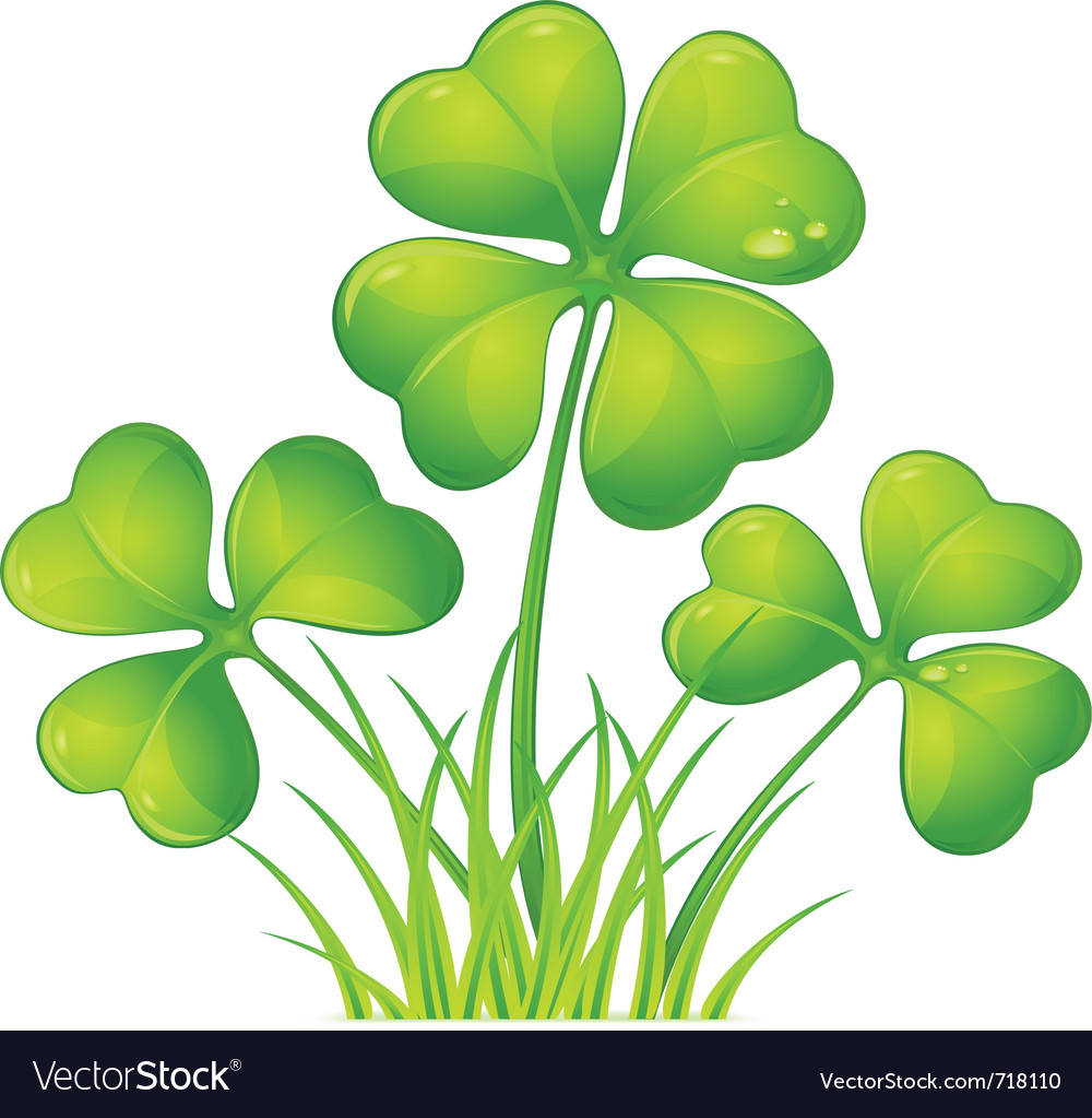 four leaf clover royalty free vector image vectorstock