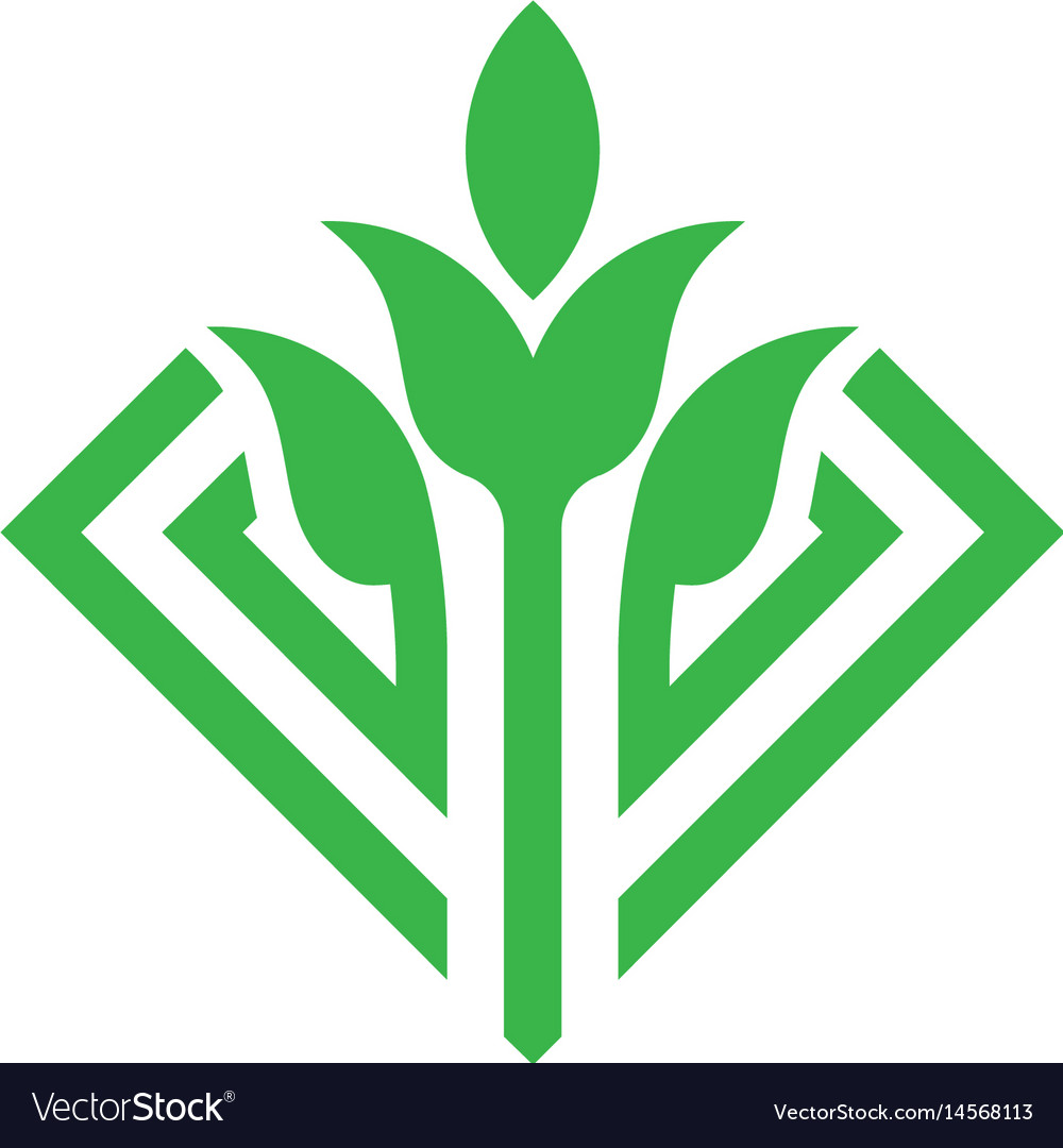 Green leaf and sprout logo concept vector image