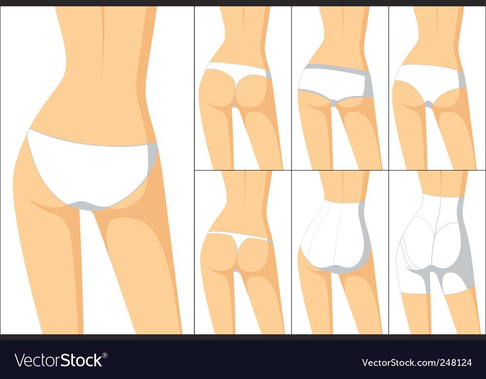 Female panties vector image