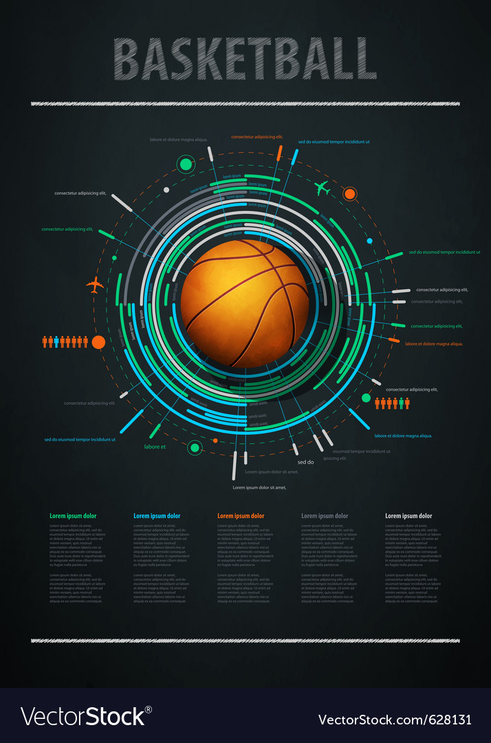 Infographics for basketball vector image
