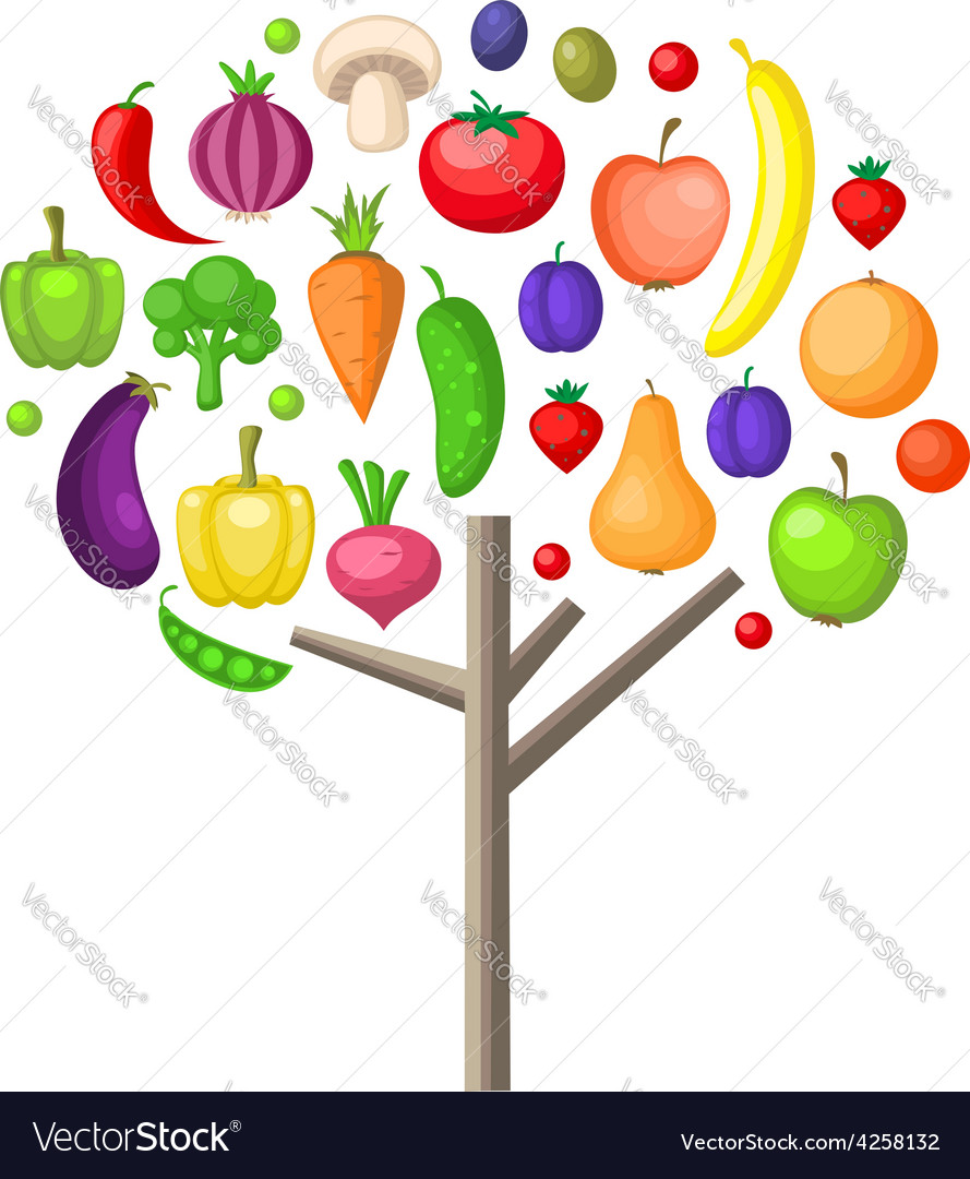 Fruits and vegetable tree vector image