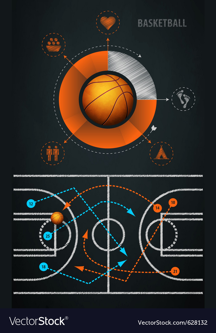 Infographics element with sports basketball ball vector image