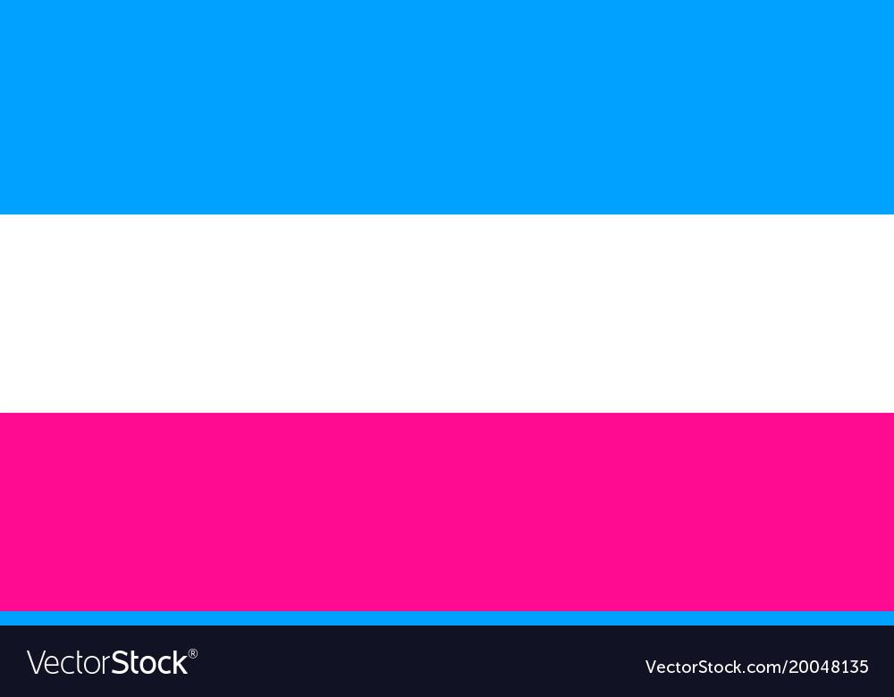 Heterosexual emblem movement normal people flat vector image
