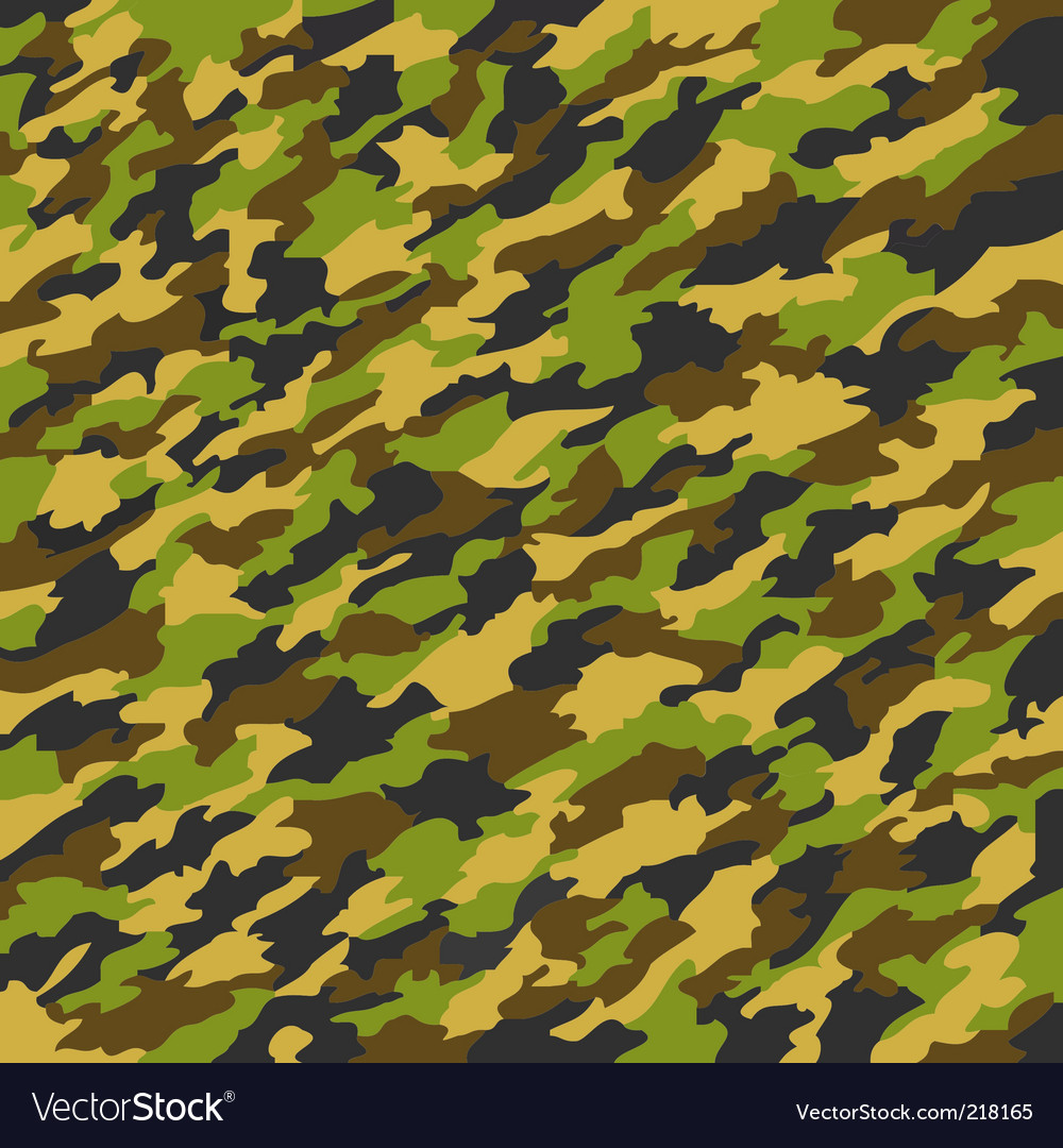 Camouflage texture Vector Image