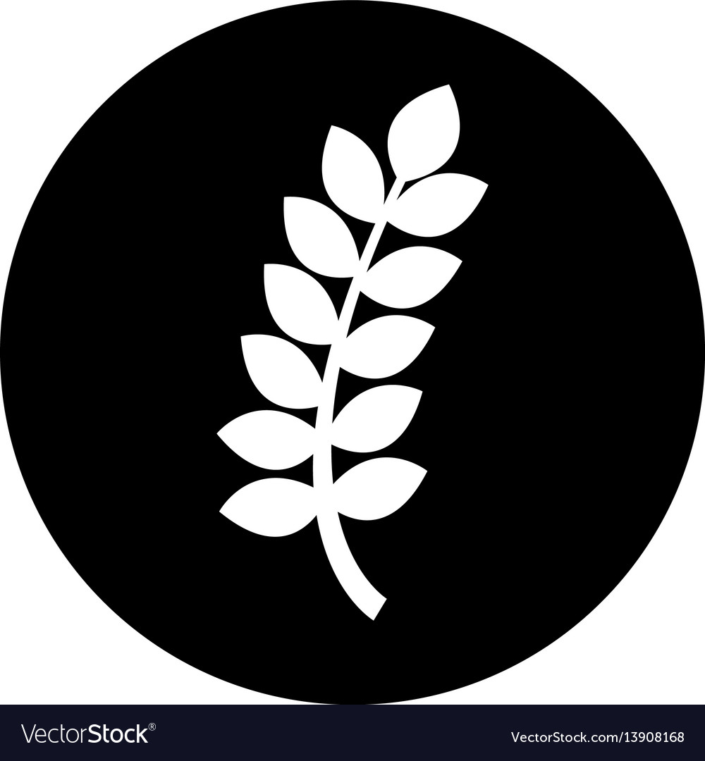 Leafs spike isolated icon vector image