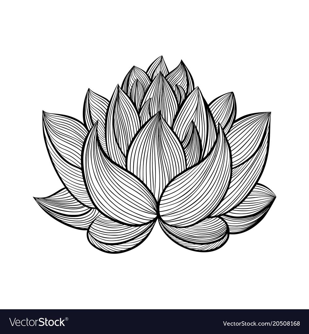 Lotus flower royalty free vector image vectorstock lotus flower vector image izmirmasajfo Gallery