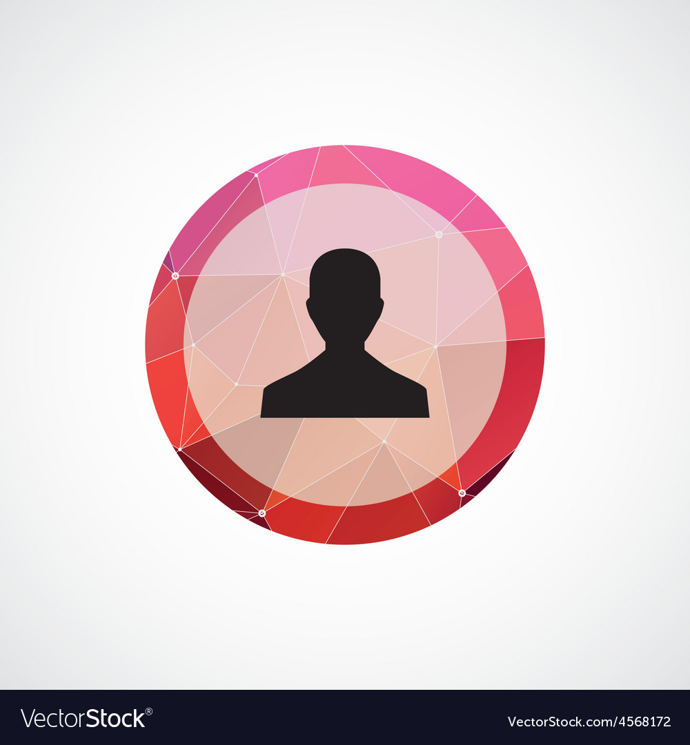 Profile circle pink triangle background icon vector image