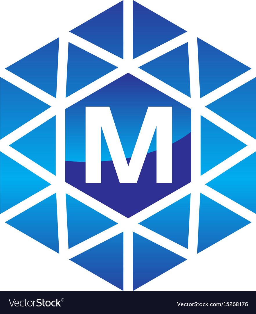 Diamond initial m vector image