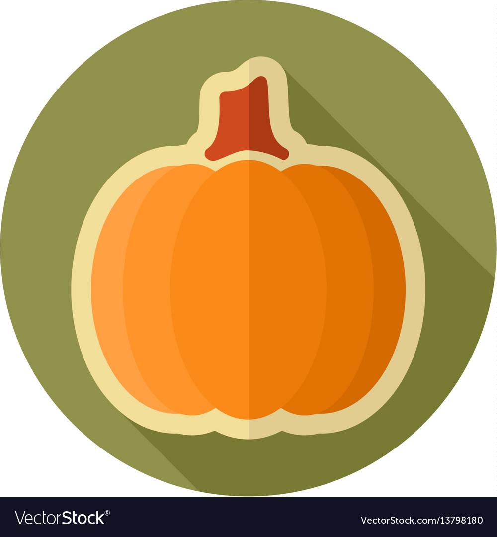 Pumpkin flat icon vegetable vector image