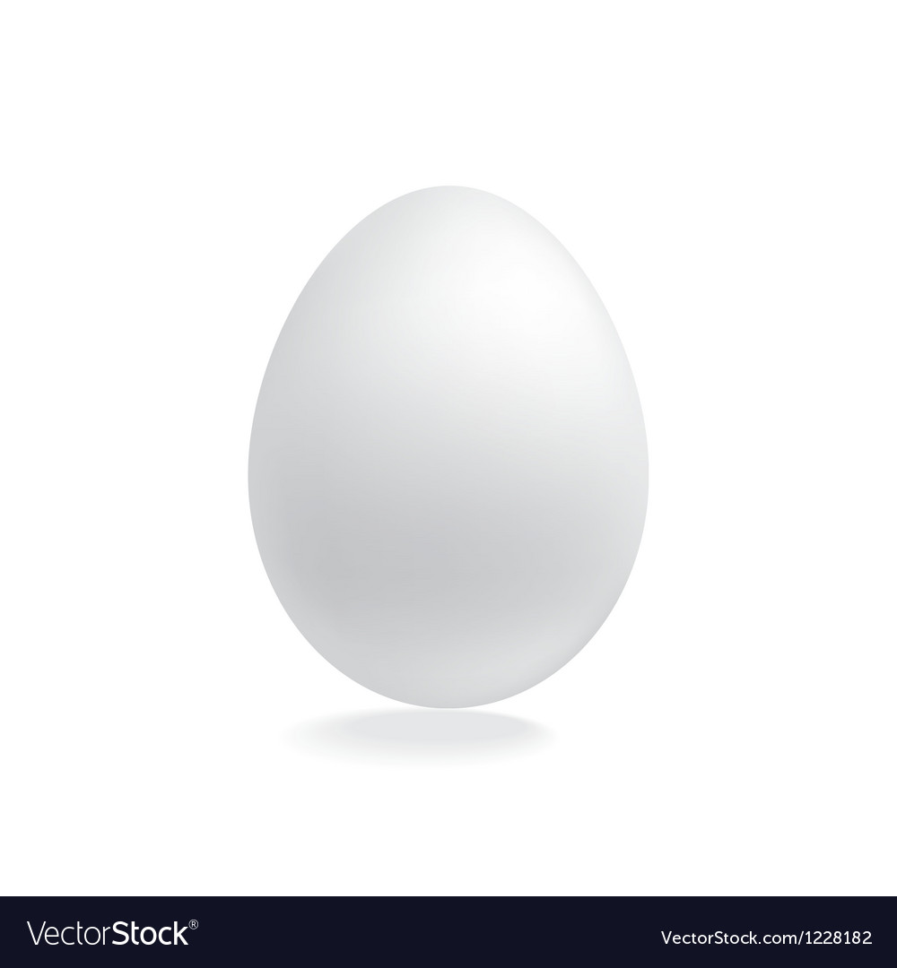 Blank eggs design template vector image