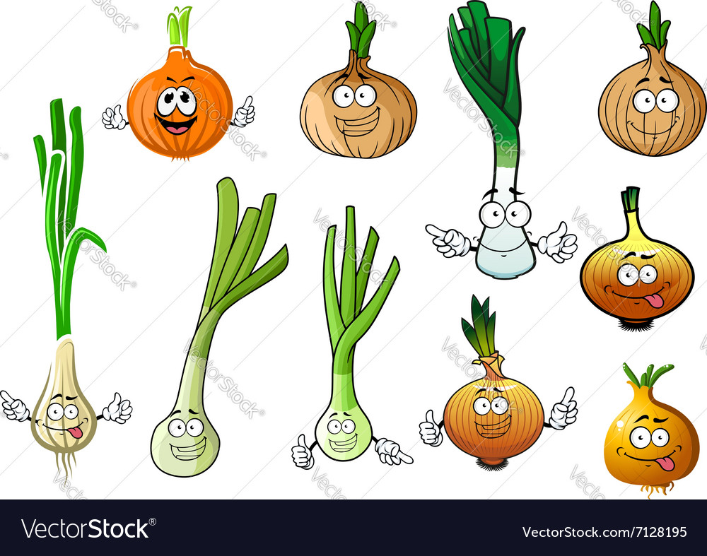 Green leek and bulb onion vegetables vector image