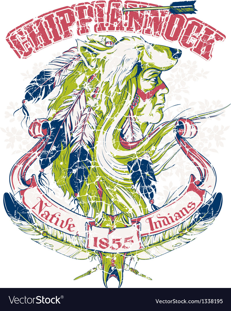 Native American design vector image