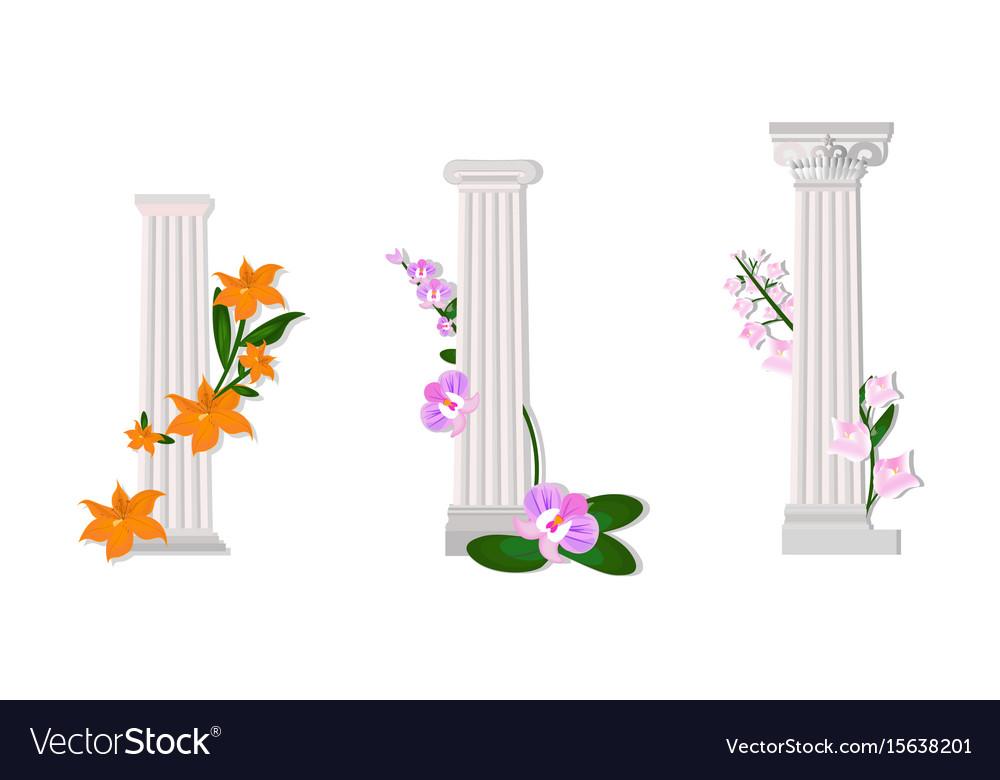 Greek columns orders doric vector image