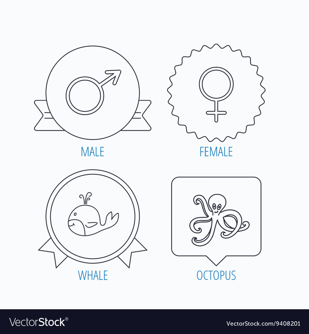 Male female and octopus icons royalty free vector image male female and octopus icons vector image pooptronica