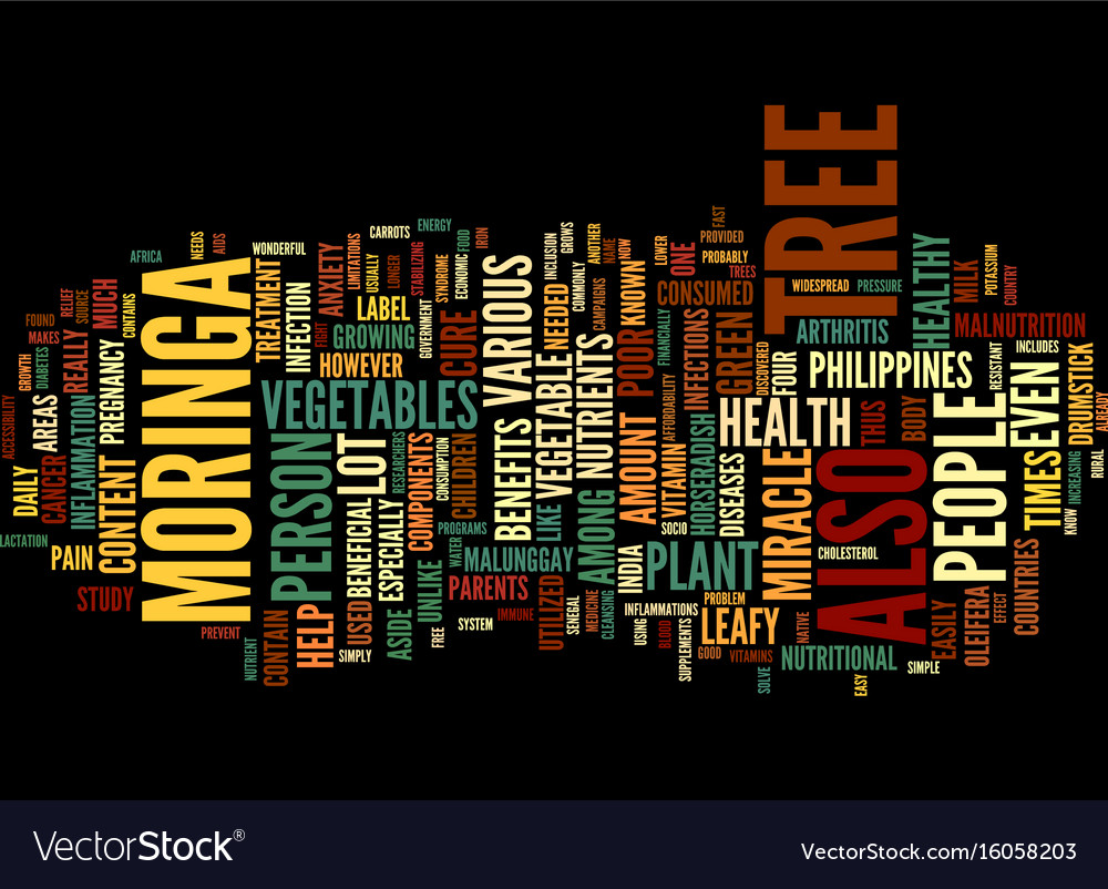 The miracle tree text background word cloud vector image