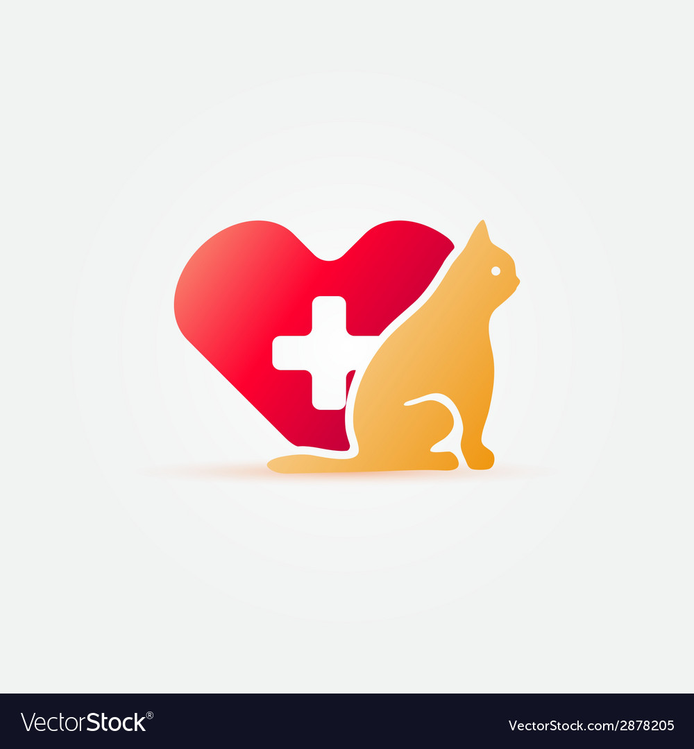 Bright cat vet icon vector image