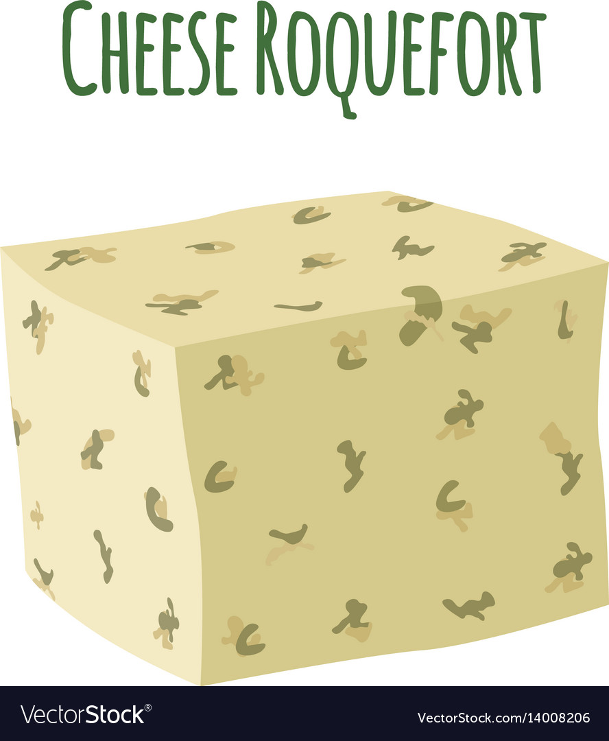 Roquefort cheese with mould dairy milky product vector image