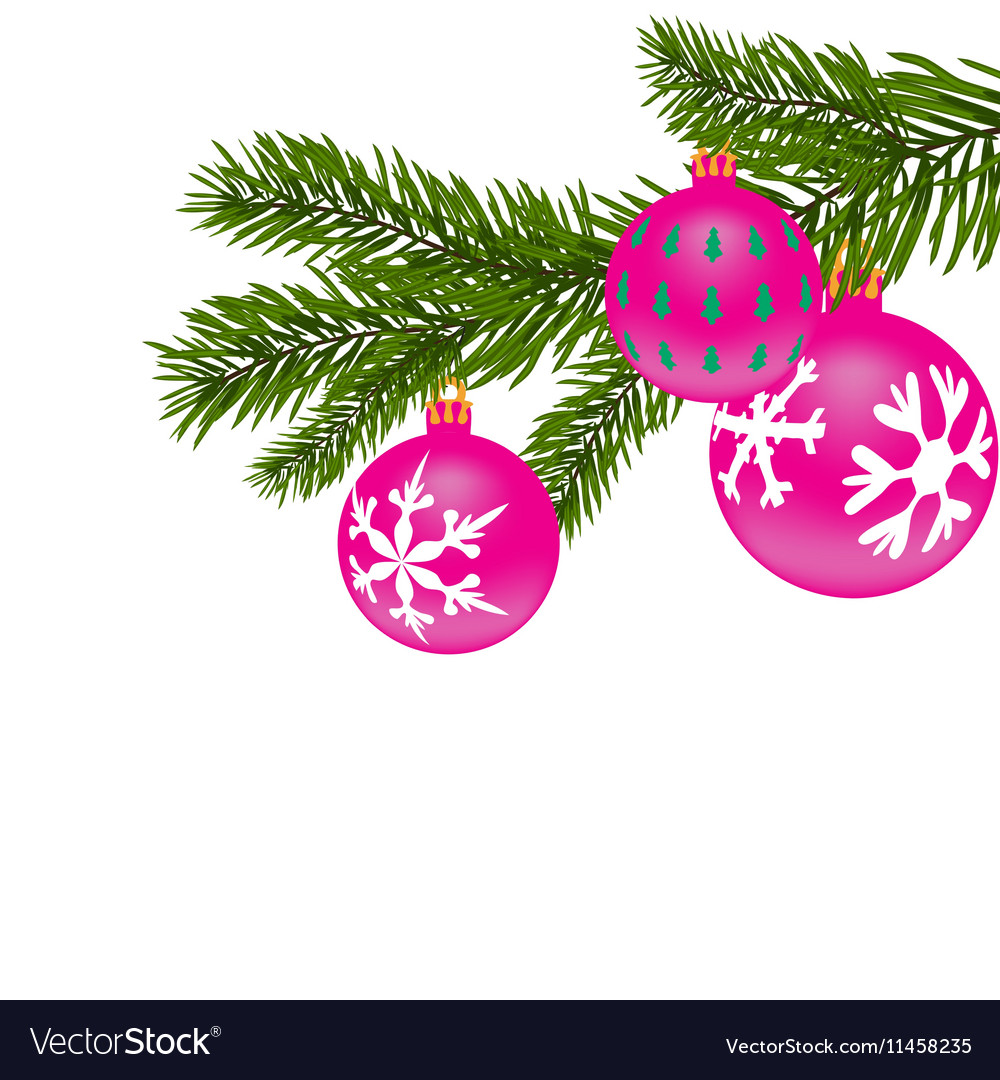 New Year or Christmas background Fir tree branch vector image