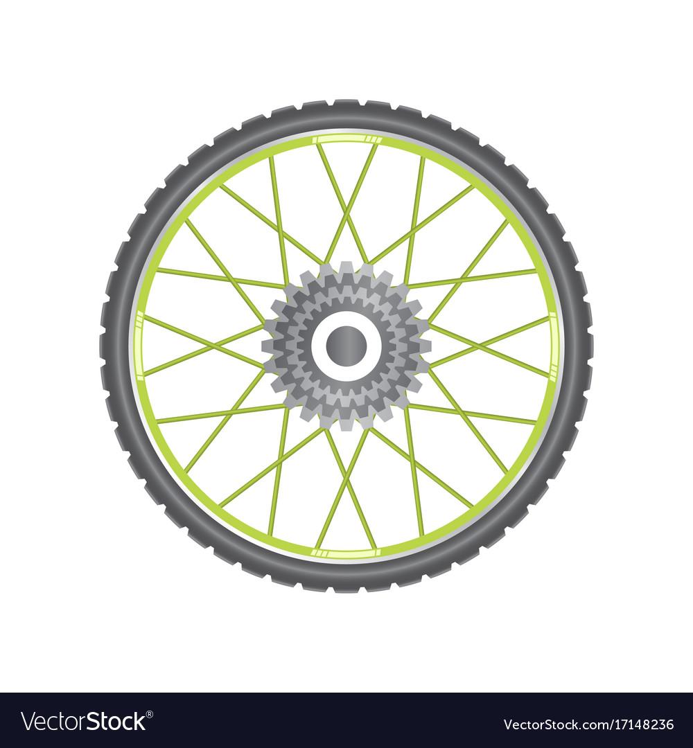 Black metallic bicycle wheel with green spokes vector image