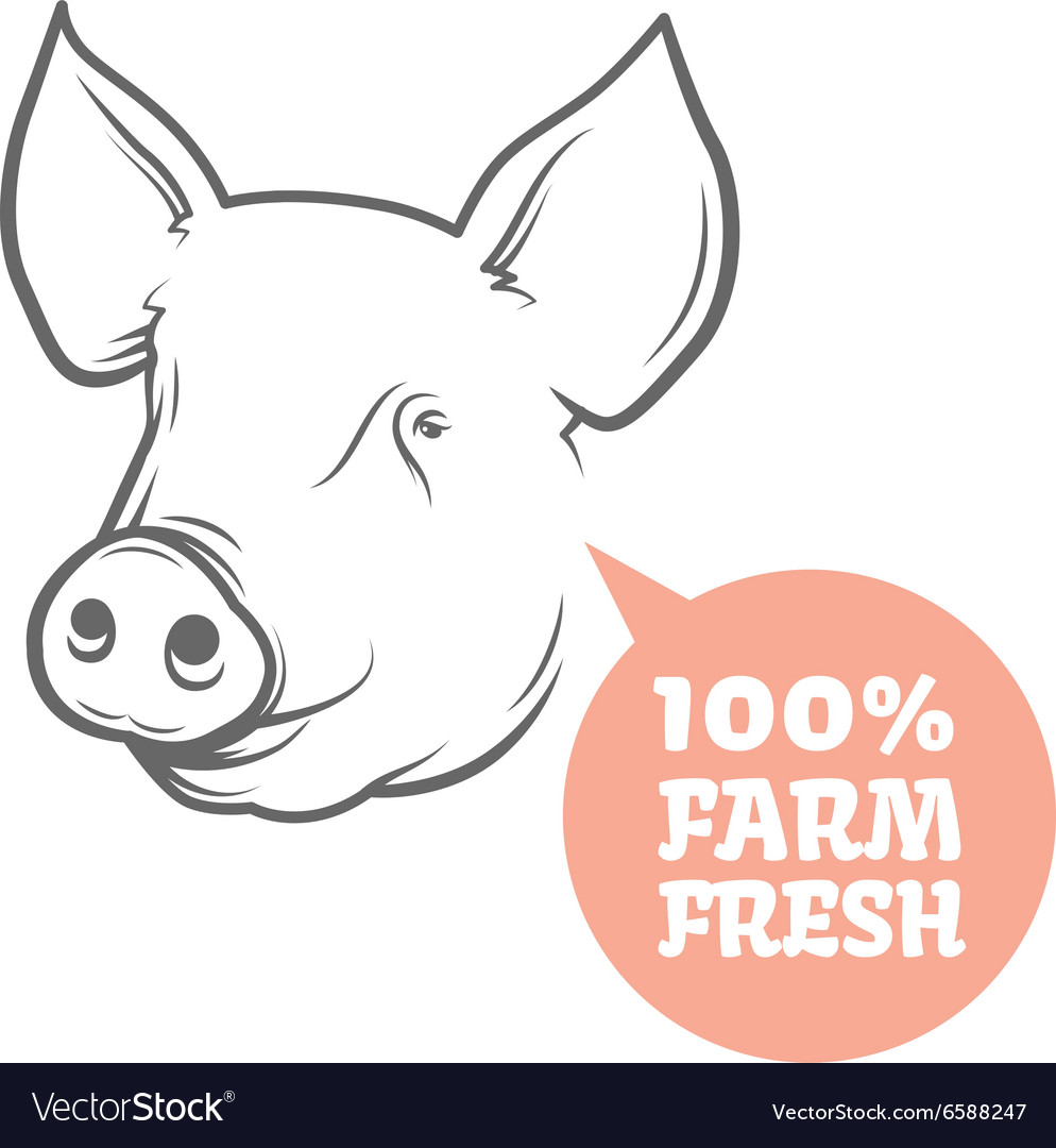 pig logo design template royalty free vector image