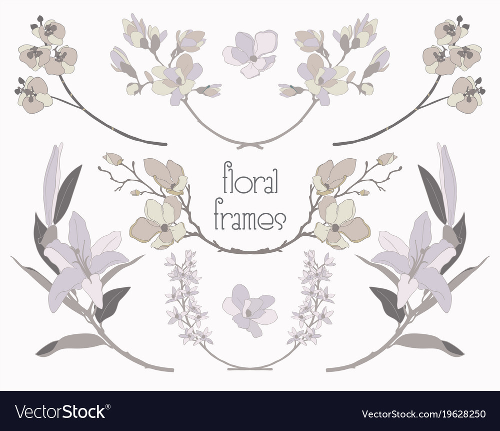 Colorful floral text frames branches vector image