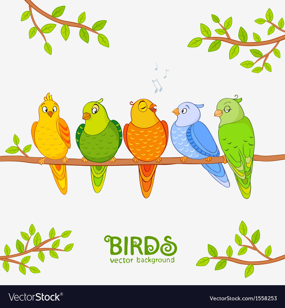 Parrot cute vector image