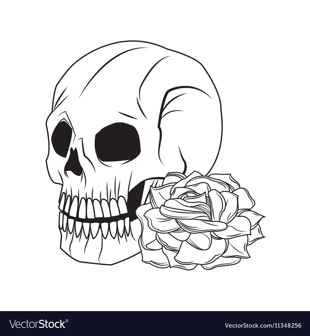 Skull and rose tattoo art design vector image