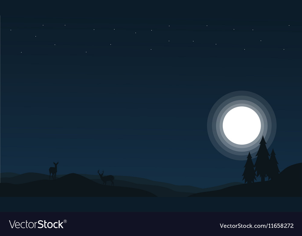 At night deer and spruce Christmas scenery vector image