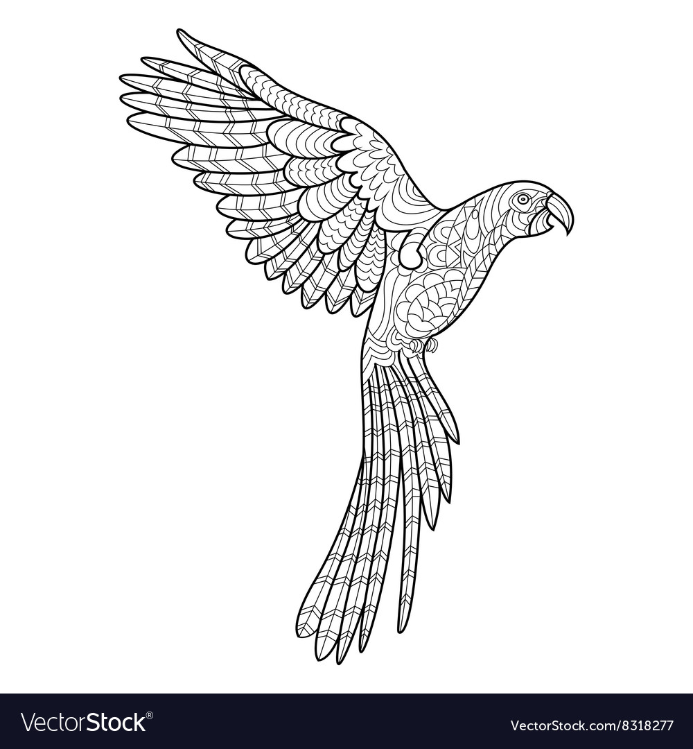 Parrot coloring book for adults Royalty Free Vector Image
