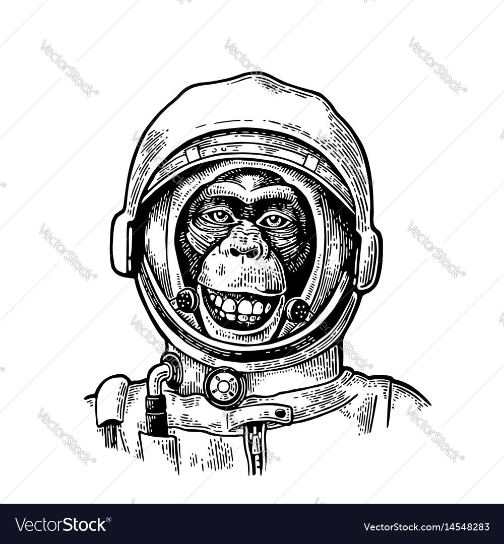 Monkey In Astronaut Helmet Vintage Black Vector Image