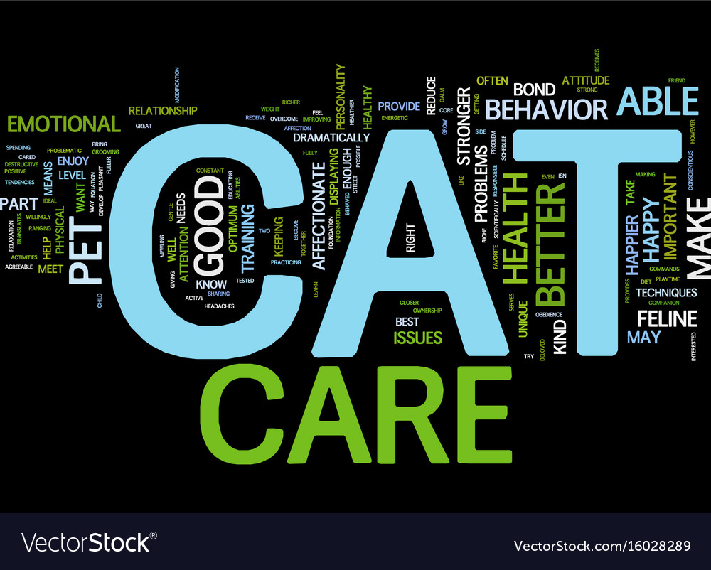 Good cat care means a happy cat text background vector image
