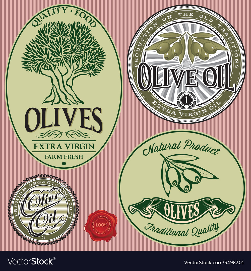 Set of templates with olive tree and oil vector image