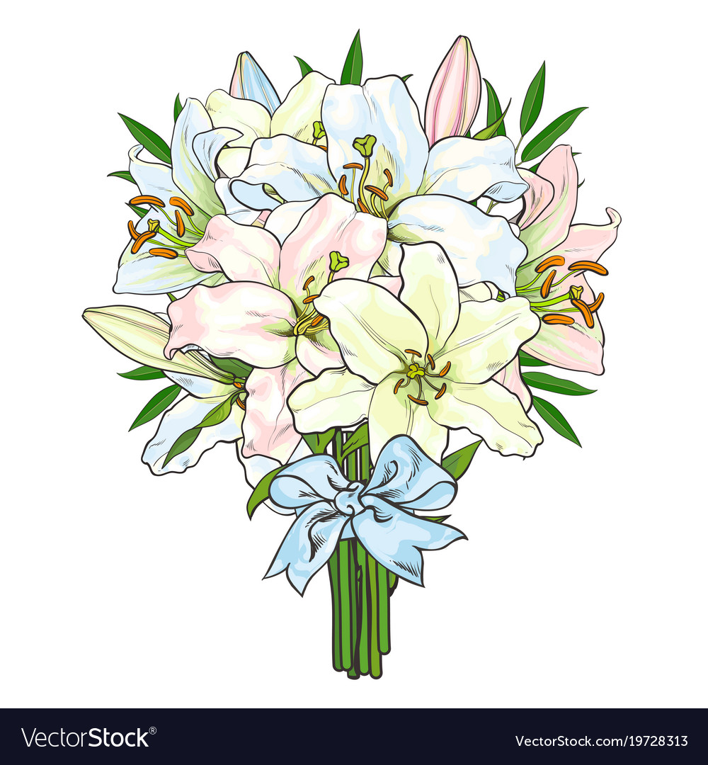 Bouquet bunch of lily flowers tied with ribbon vector image izmirmasajfo Images