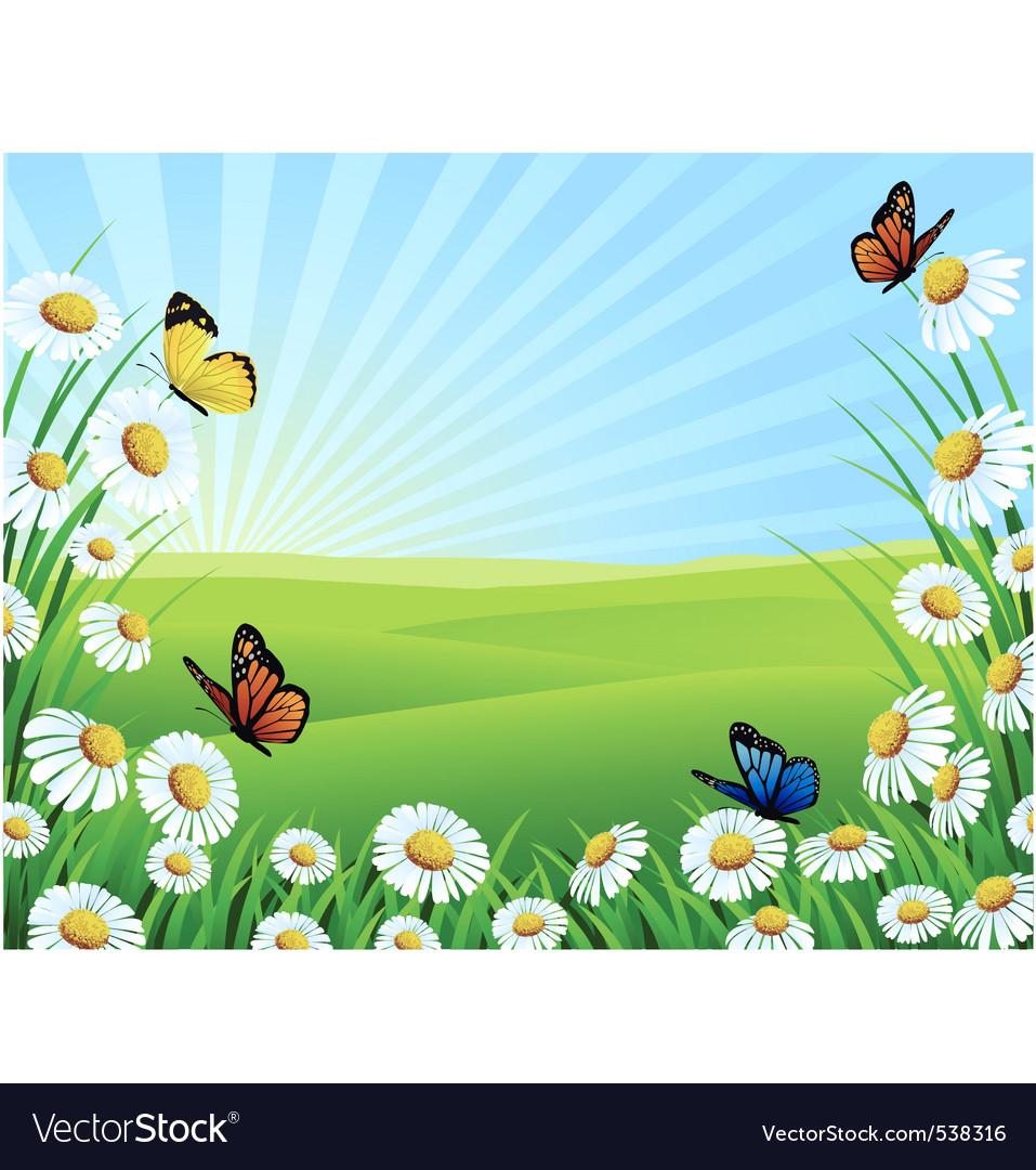 Beautiful nature vector image