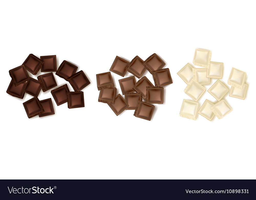 Various Chocolate Slices Set vector image