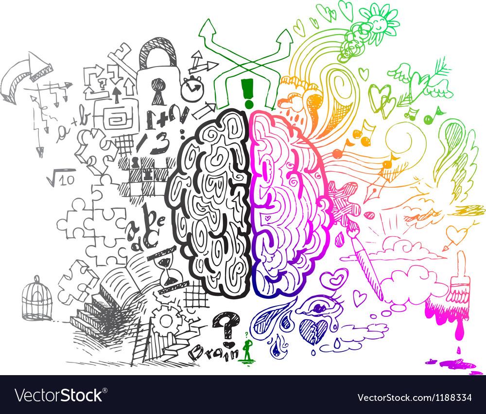 Brain hemispheres sketchy doodles vector image
