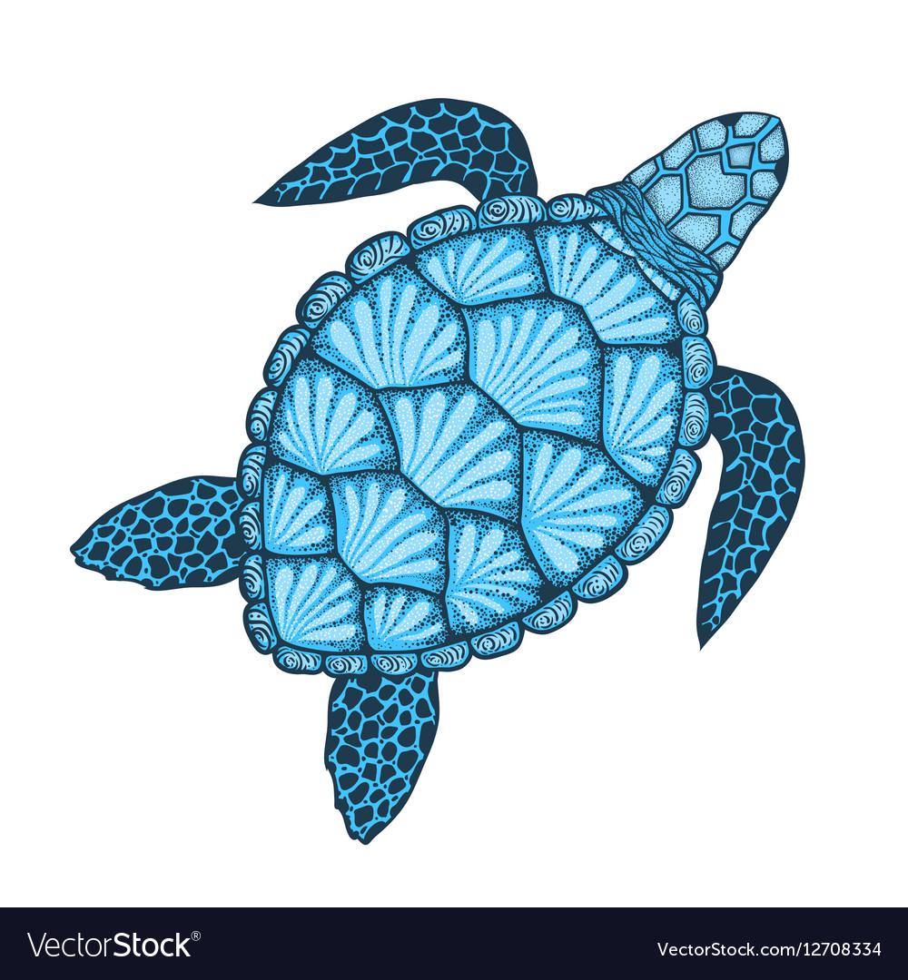 Sea turtle in line art style Hand drawn Design vector image