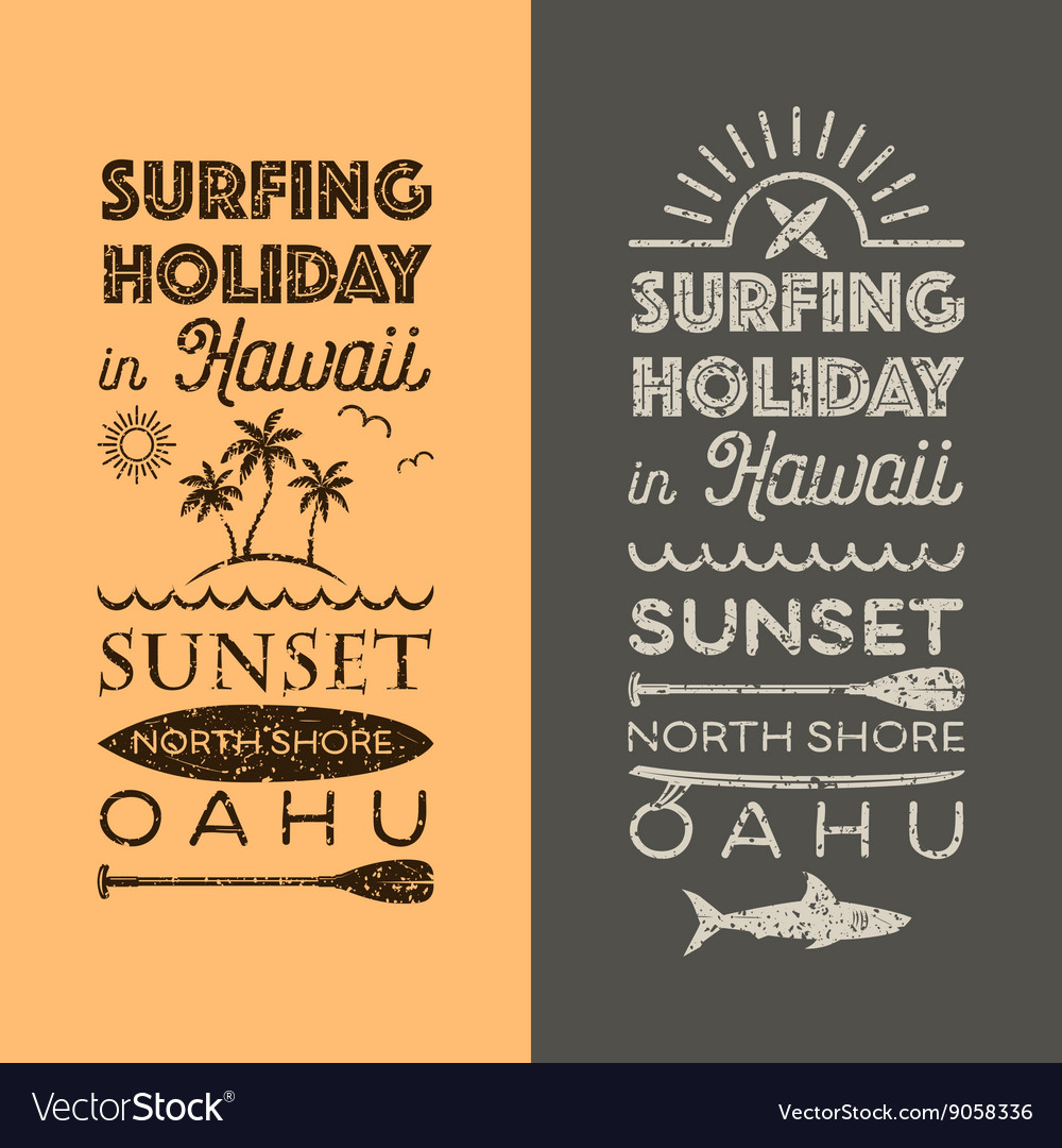 Surfing holiday hawaii vector image