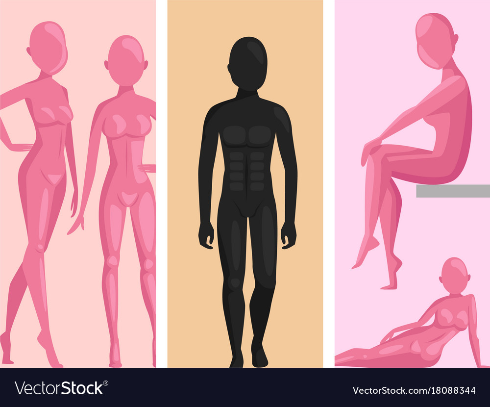 Dummy mannequin model poses male and female Vector Image