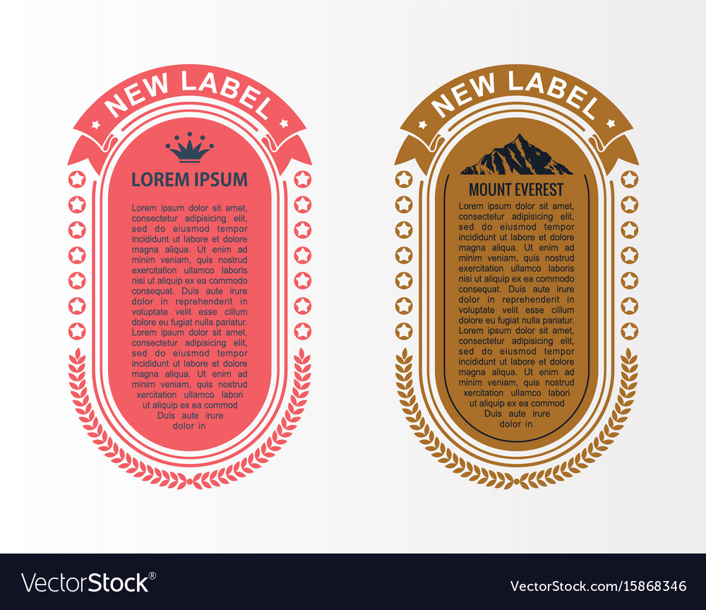 Infographic layout template set card parts vector image